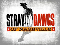 1379900372 Stray Dawgs Logo - Square